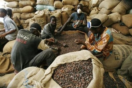 Dalende cacao-export